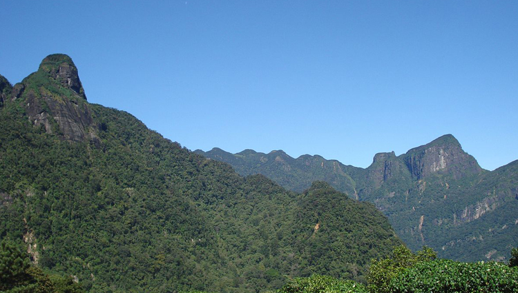 Knuckles Mountains Trekking Tour